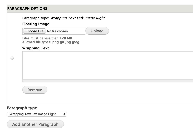 Display Suite & Paragraphs Part 2   Function1